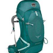 Osprey Aura AG 50 Womens Hiking Rucksack - Rainforest [Harness Size:Medium]