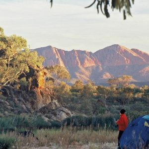 Camping in the Finke River bed on the Larapinta Trail