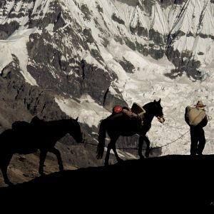 Ausangate-Arriero con 2 caballos