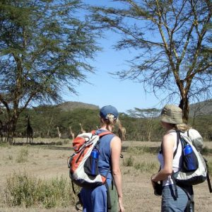 Great_migrations_Masai_Mara