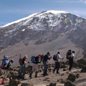 Kilimanjaro Centre for Trekking and Ecotoursm3