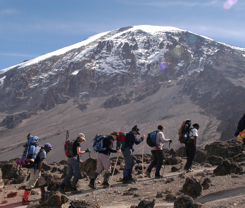 Kilimanjaro Centre for Trekking and Ecotoursm3