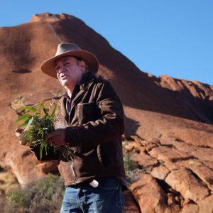 australia_northern-territory_uluru_cultural-experience