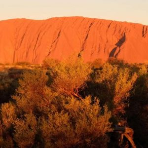 australia_nt_uluru_young-female-pax