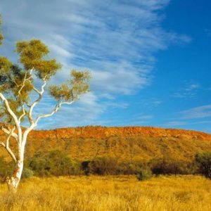 australia_nt_western-macdonnell_ranges