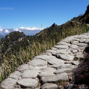 peru coast to south trek