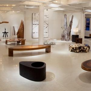 Chista showroom 537