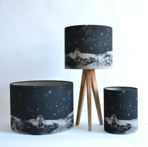 Emily jepps at the maker place.co .uk moon lampshade %c2%a392 %c2%a372 %c2%a352.jpg