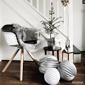 Spree  designer moda dining chairs 1592 treniq 17 1512572874089