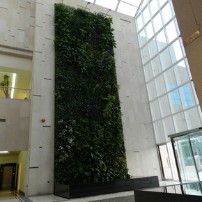 Indoor-Vertical-Gardens-Big-Realizations-Panel_Treniq