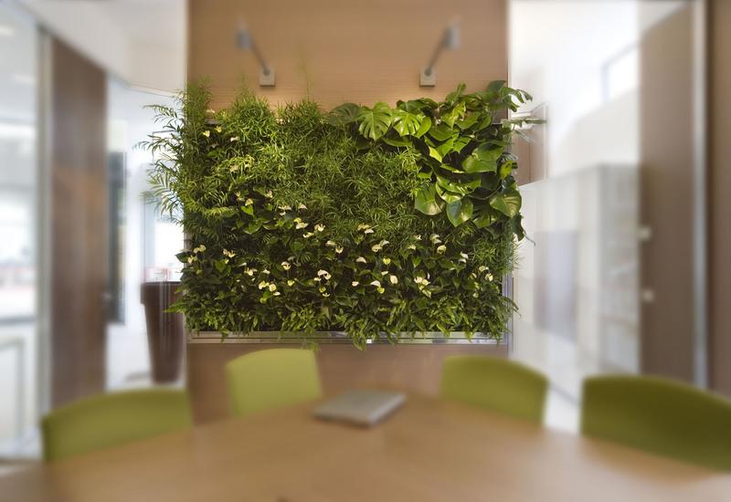 Indoor vertical gardens for offices panel iii sundar italia treniq 2