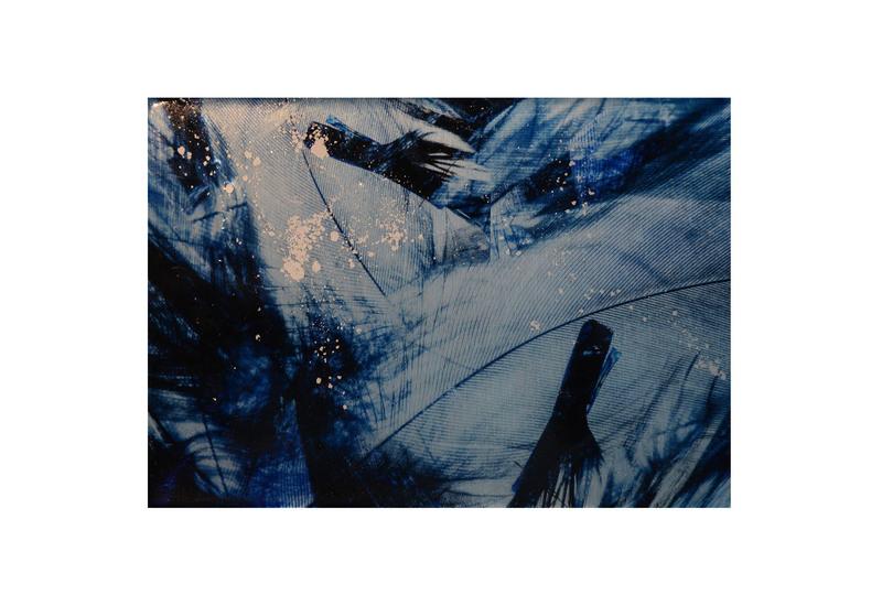 Blue bird panel studio 198 treniq 1