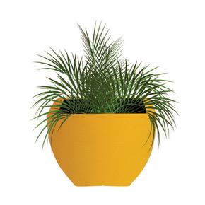 Orabella Color Planters - Sereno - Treniq