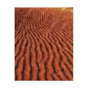 Desert Rug - Sarawagi rug - Treniq