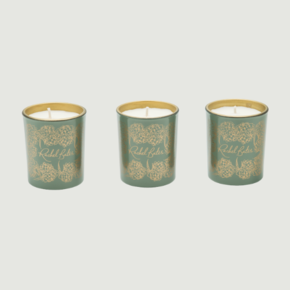 Botanical-Candle-Mini-Set_Rachel-Bates-Interiors-Ltd_Treniq_0