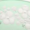 Cristobelle crystal champagne saucer   peridot rachel bates interiors ltd treniq 1 1491930687932