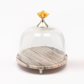 Cake Dome Lotus Collection - Home N Earth -