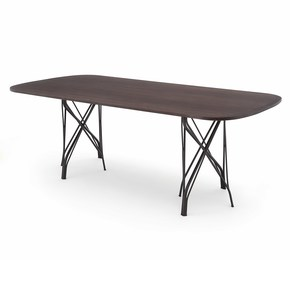 Grass-Oblong-Dining-Table-_Coedition_Treniq_0