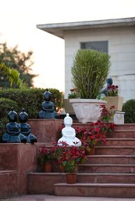 Sculpture-3_Devika-Diwan_Treniq_0