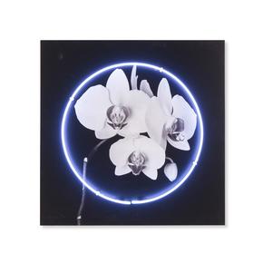 Neon-Orchid_Kelly-Hoppen_Treniq_0