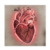 Neon heart coup   co treniq 1 1504017027990