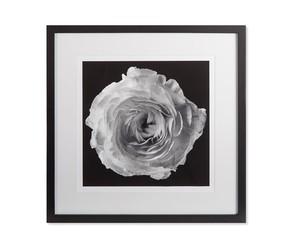 Black-Blossom-A_Kelly-Hoppen_Treniq_0