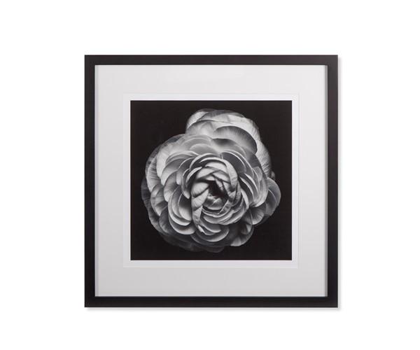 Black blossom b kelly hoppen treniq 1 1504260069377