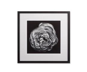 Black-Blossom-B_Kelly-Hoppen_Treniq_0
