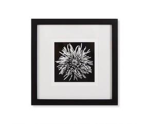Black-Blossom-D_Kelly-Hoppen_Treniq_0