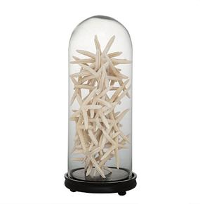 Glass-Bell-Jar-L-|-Eichholtz-Catania_Eichholtz-By-Oroa_Treniq_0