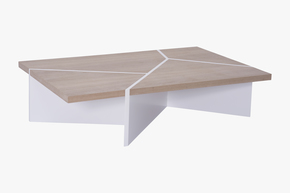 Raiz-Coffee-Table-By-Bernardo-Senna_Kelly-Christian-Designs-Ltd_Treniq_0