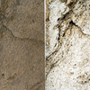 Amsterdam translucent panel stoneleaf treniq 1 1513178859167