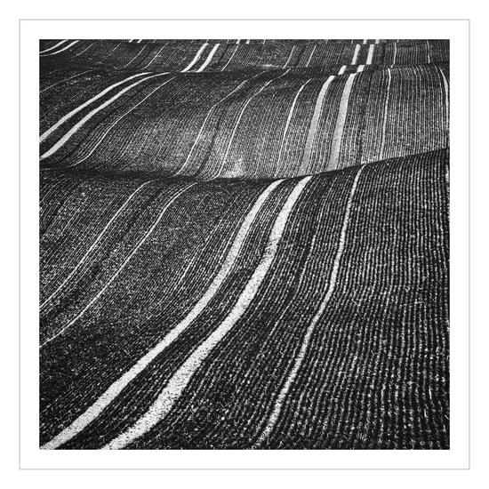 Corduroy fields beata podwysocka fine art photography treniq 1 1513279908332