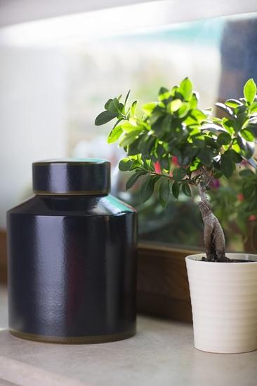 Modern ceramic temple jar decorus boutique treniq 1 1513760543583