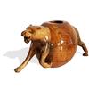 Pregnant panther avana africa treniq 1 1515841973047
