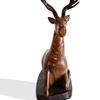 Antelope dark avana africa treniq 1 1516793767218