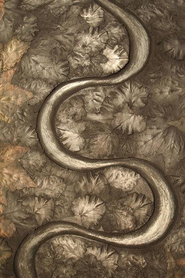 Ghost snake in winter leaves  metall fx treniq 1 1517834928564