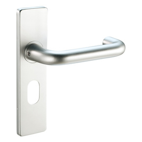 Aluminium Door Handle On Backplate