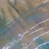 Plastic shoreline lindsey keates environmental artist  treniq 1 1523221464834