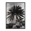 Venice palm trees siver leaf  sonder living treniq 1 1527686301912