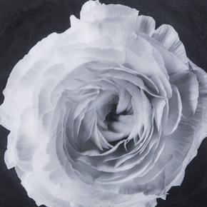Black-&-White-Flower-Epoxy-B-_Sonder-Living_Treniq_0
