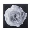 Black   white flower epoxy b  sonder living treniq 1 1527739897872