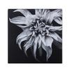 Black   white flower epoxy f  sonder living treniq 1 1527739936554