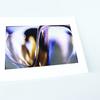 Abstract glass   matted photograph eric christopher jackson treniq 1 1528449303249