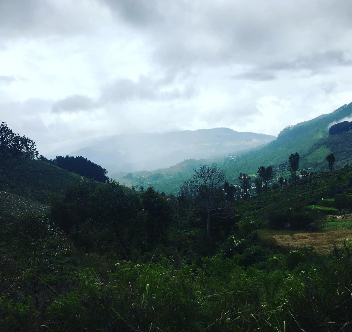 User submitted photo of Sri Lanka
