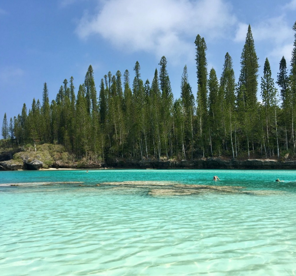 User submitted photo of New Caledonia