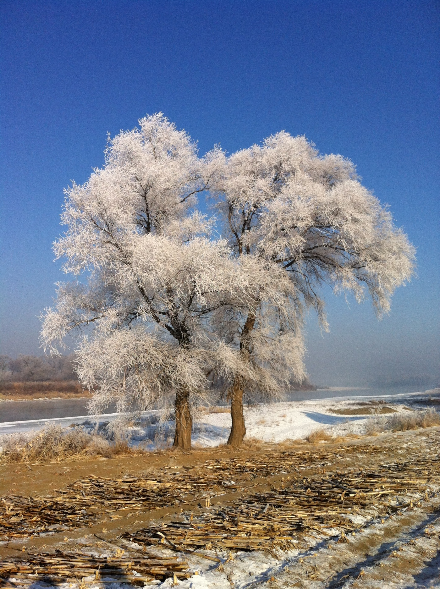 User submitted photo of Jilin