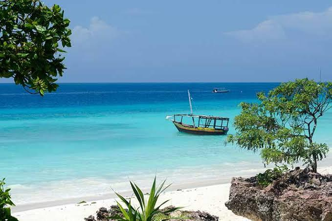 User submitted photo of Zanzibar