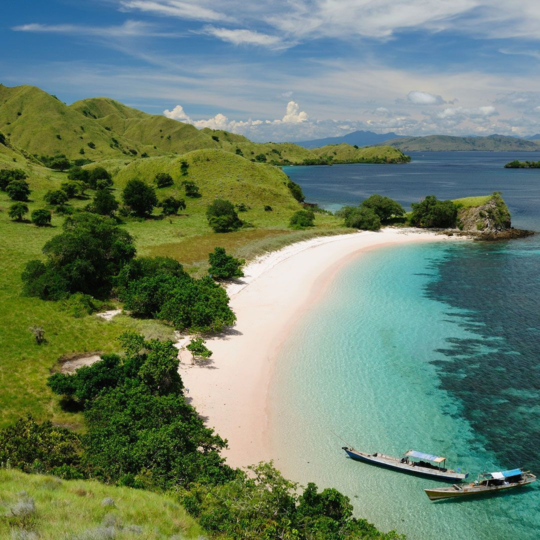 User submitted photo of Komodo