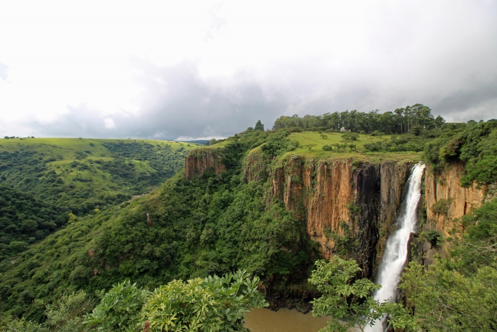 User submitted photo of Howick Falls